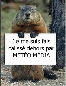 Humour Marmotte